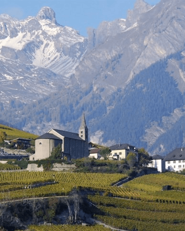 The wines of the Valais region