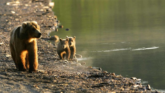 article-10554- section-12894-0