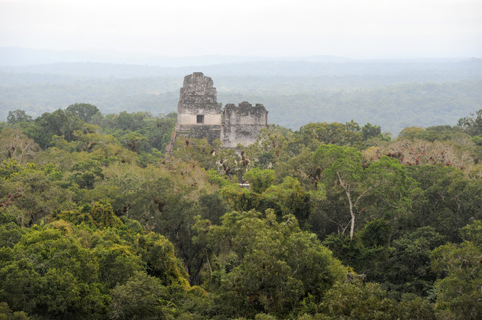 article-10554- section-12896-2