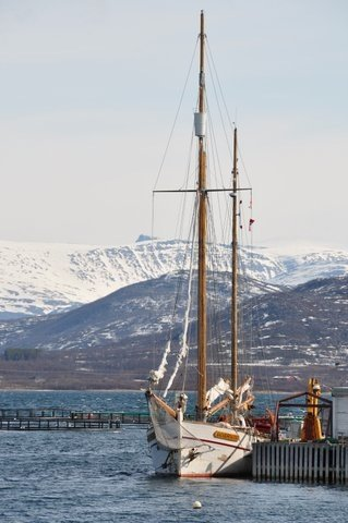 article-10554- section-12897-3