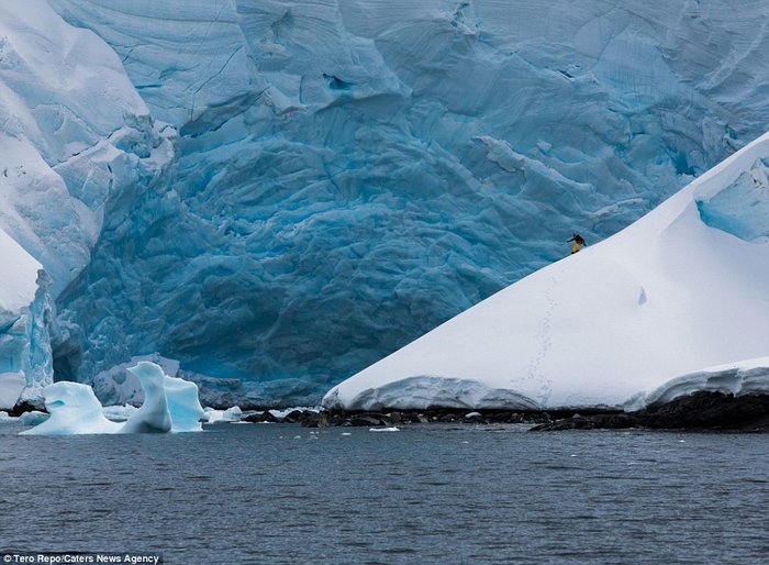article-10554- section-12902-8