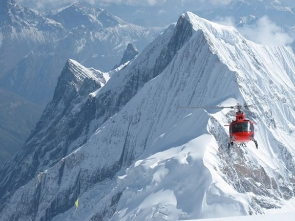 article-10554- section-12895-1